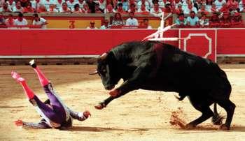 Схватка Карла 5 с быком