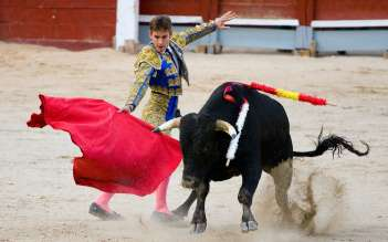 Испанская коррида