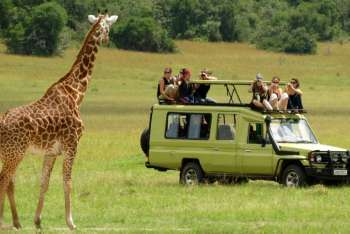 Сколько стоит съездить в Африку